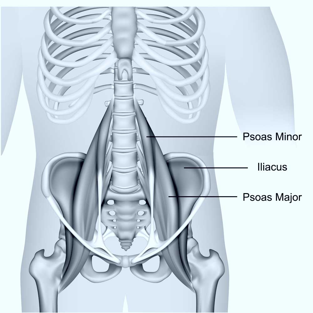 Psoas Impingement Doctor | New York City, NY